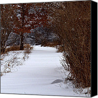Snowed In Canvas Prints - Snowed In Trail Canvas Print by Thomas Young