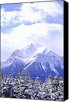 Icy Canvas Prints - Snowy mountain Canvas Print by Elena Elisseeva