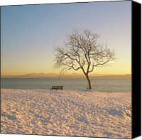 Solitude Canvas Prints - Snowy Winter Sunset Over The River Forth Canvas Print by David McAllister