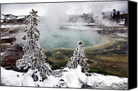 Pond Canvas Prints - Snowy Yellowstone Canvas Print by Jason Maehl