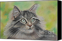 Cats Pastels Canvas Prints - Soft Kitty Canvas Print by Julie Brugh Riffey
