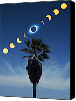 Solar Eclipse Canvas Prints - Solar Eclipse Sequence Canvas Print by Detlev Van Ravenswaay