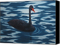 Blue Swan Canvas Prints - Solitaire Canvas Print by Roseann Gilmore