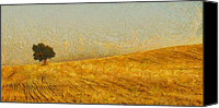 Wheat Canvas Prints - Solitude is Golden Canvas Print by Aaron Stokes