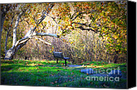 Park Benches Canvas Prints - Solitude under the Sycamore Canvas Print by Carol Groenen