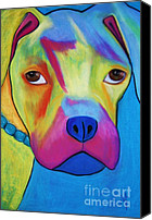 Boxer Pastels Canvas Prints - Sonny Blu Canvas Print by Melinda Etzold