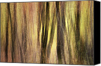 Kinetic Canvas Prints - Sourwoods in Autumn Abstract Canvas Print by Rob Travis