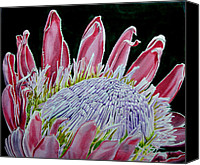 View Tapestries - Textiles Canvas Prints - South African Flower Protea Painting Canvas Print by Sylvie Heasman