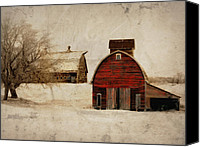 Barn Digital Art Canvas Prints - South Dakota Corn Crib Canvas Print by Julie Hamilton