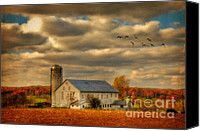 White Barn Canvas Prints - South For The Winter Canvas Print by Lois Bryan