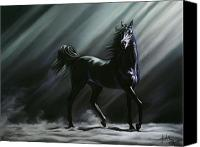 Equine Pastels Canvas Prints - Sovereign Canvas Print by Kim McElroy