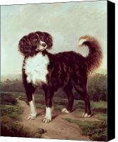 Dogs Canvas Prints - Spaniel Canvas Print by JW Morris