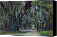 Trees Pastels Canvas Prints - Spanish Moss Canvas Print by Billie Colson