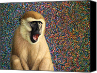 Monkey Canvas Prints - Speechless Canvas Print by James W Johnson