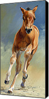 Foal Painting Canvas Prints - Speed Test Canvas Print by Alecia Underhill