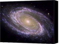Major Canvas Prints - Spiral Galaxy Messier 81 Canvas Print by Stocktrek Images