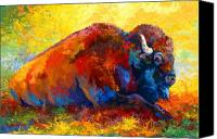 Prairie Canvas Prints - Spirit Brother - Bison Canvas Print by Marion Rose