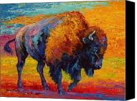 Prairie Canvas Prints - Spirit Of The Prairie -  Bison Canvas Print by Marion Rose
