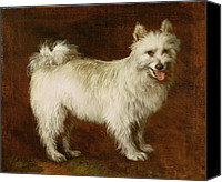 Dogs Canvas Prints - Spitz Dog Canvas Print by Thomas Gainsborough