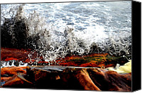 Wood Pyrography Canvas Prints - Splash on the wood Canvas Print by Nelly Avraham