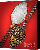 Crystals Canvas Prints - Spoonfuls of Salt and Pepper Canvas Print by Susan Candelario