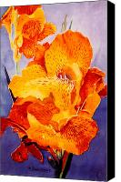 Canna Canvas Prints - Spotted Canna Canvas Print by M Diane Bonaparte