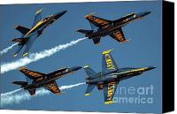 Us Navy Fighters Canvas Prints - Spread Your Wings Canvas Print by Bibhash Chaudhuri