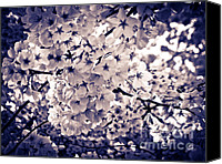 Impressionism Pyrography Canvas Prints - Spring Blooms IV Canvas Print by Mira Dimitrijevic