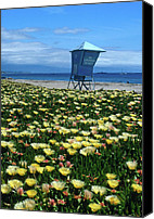 Beach Prints Canvas Prints - Spring Break Santa Barbara Canvas Print by Kathy Yates