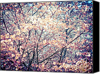 Impressionism Pyrography Canvas Prints - Spring impressions I  Canvas Print by Mira Dimitrijevic