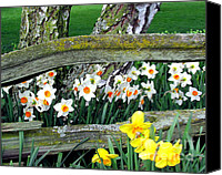 Contry Canvas Prints - Spring in Garden Canvas Print by Irina Hays