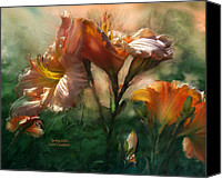 Peach Colored Canvas Prints - Spring Lilies Canvas Print by Carol Cavalaris