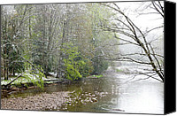 Williams Canvas Prints - Spring Snow Three Forks Williams River Canvas Print by Thomas R Fletcher