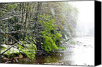 Unnatural Canvas Prints - Spring Snow Williams River Canvas Print by Thomas R Fletcher
