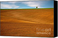 Soil Canvas Prints - Spring soil Canvas Print by Evgeni Dinev