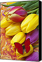 Paper Photo Canvas Prints - Spring tulips Canvas Print by Garry Gay