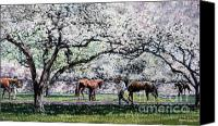 Pdjf Canvas Prints - Springtime at Keeneland Canvas Print by Thomas Allen Pauly