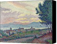 Signac Canvas Prints - St Tropez Pinewood Canvas Print by Paul Signac