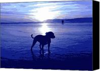 Sunset Digital Art Canvas Prints - Staffordshire Bull Terrier on Beach Canvas Print by Michael Tompsett