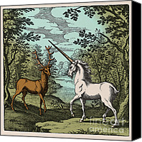 Black Unicorn Canvas Prints - Stag And Unicorn, 18th Century Canvas Print by Science Source