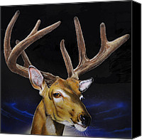 Jurek Zamoyski Canvas Prints - Stag Canvas Print by Jurek Zamoyski
