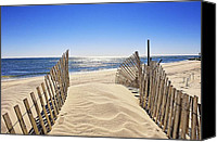 Sand Fences Canvas Prints - Stairway Of Sand Canvas Print by Tim Doubrava