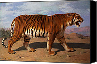 Grb Canvas Prints - Stalking Tiger Canvas Print by Rosa Bonheur