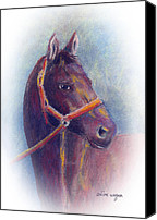 Equine Pastels Canvas Prints - Stallion Canvas Print by Arline Wagner
