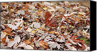 Leaf Pile Photo Canvas Prints - Standing Leaf Canvas Print by Katie  Wing Vigil