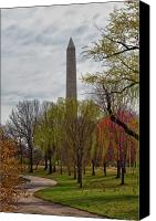 D.c. Canvas Prints - Standing Proud Canvas Print by Janet Fikar