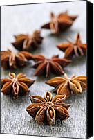 Spice Canvas Prints - Star anise fruit and seeds Canvas Print by Elena Elisseeva