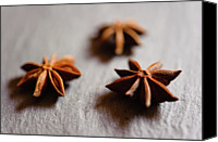 Tray Canvas Prints - Star Anise On Slate Tray Canvas Print by Alexandre Fundone