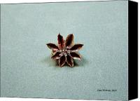 Pendant Jewelry Canvas Prints - Star Flower Canvas Print by Stan Mowatt