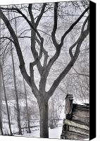 Kansas City Canvas Prints - Stark Winter Images Canvas Print by Don Wolf